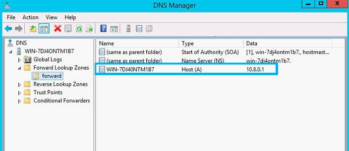 dns manager forward zone