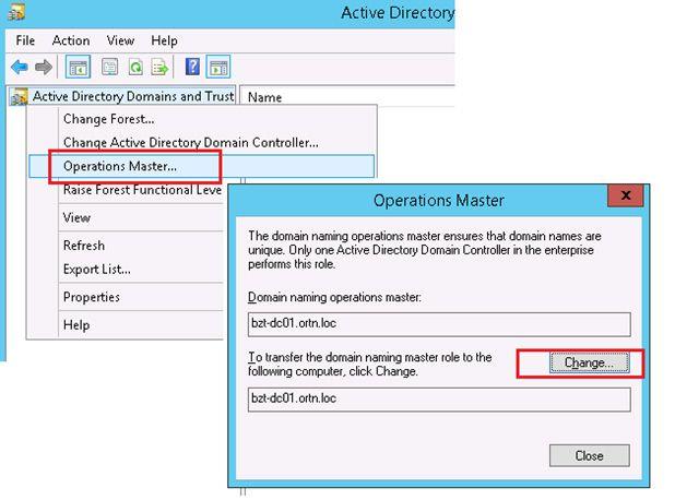 domain naming operations master