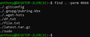 linux find example