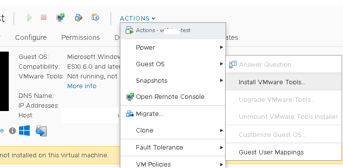 How to Install VMWare Tools on Guest VMs?
